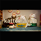 Kattenlaan 9